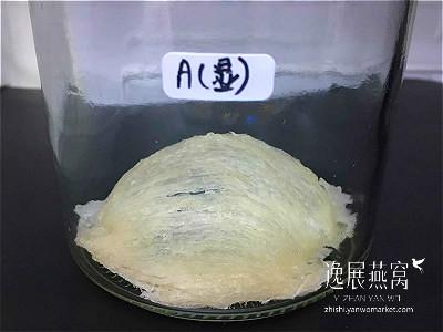 发霉燕窝实验-冰箱保存19A