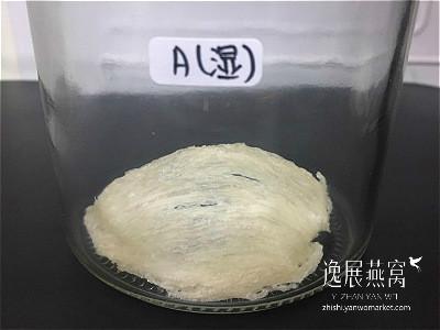 发霉燕窝实验-冰箱保存1A