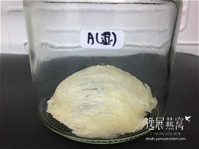 发霉燕窝实验-冰箱保存7A