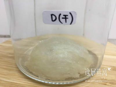 发霉燕窝实验-常温保存12D