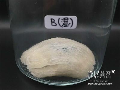 发霉燕窝实验-常温保存1B