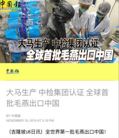 马来西亚是首个出口毛燕至中国的国家