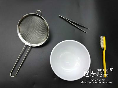 镊子、筛子、小碗、小刷子