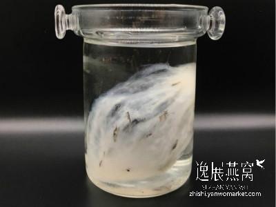 毛燕泡发清洗法1