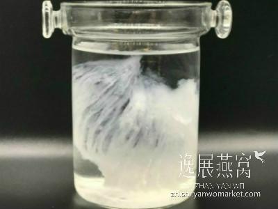 燕窝泡发中(矿泉水)
