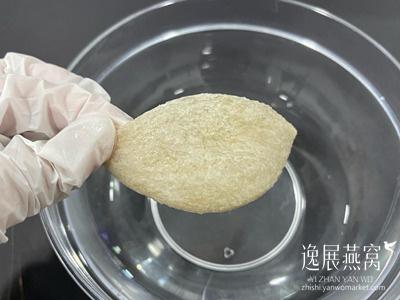 药水燕窝制作过程5