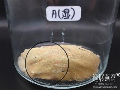 发霉燕窝实验-常温保存46A