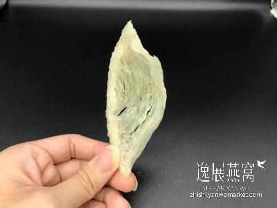 黄燕窝漂白前(背面)