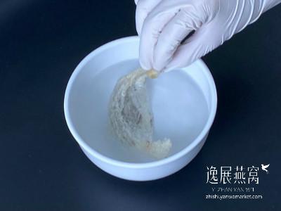 碗里加入双氧水浸泡漂白燕窝